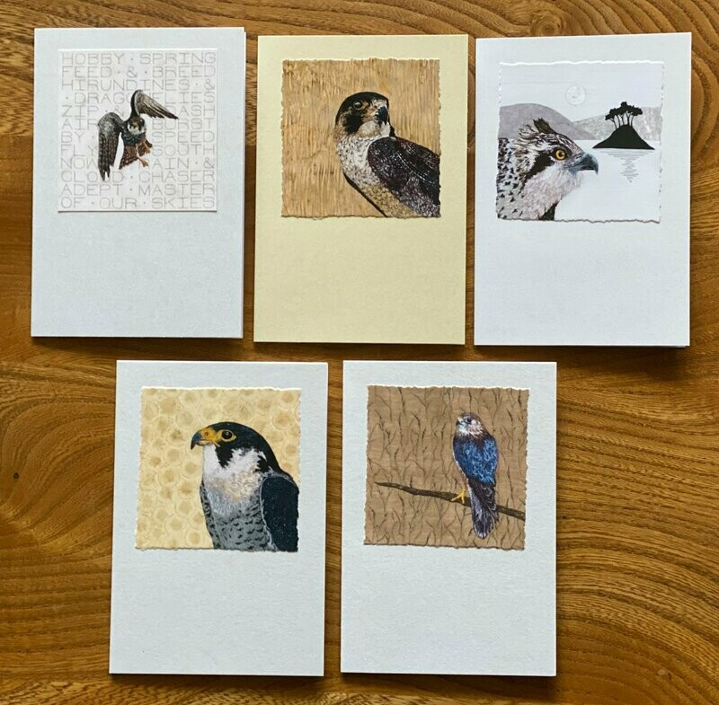 Card Set 2 - Birds of Prey (Pack of 5)