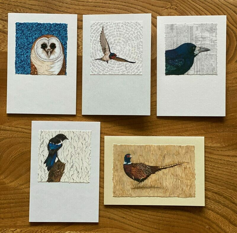 Card Set 3 - Assorted (Pack of 5)