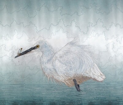 'Catch of the Day' Little Egret - Limited Edition Giclee Print