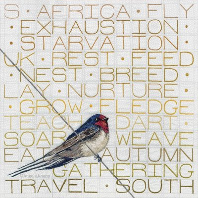 'A Swallow's Journey' - Limited Edition Giclee Print