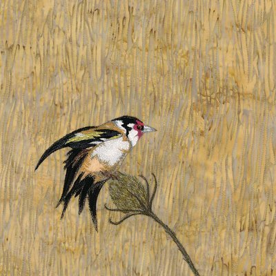 'Golden Breeze' Goldfinch - Limited Edition Giclee Print
