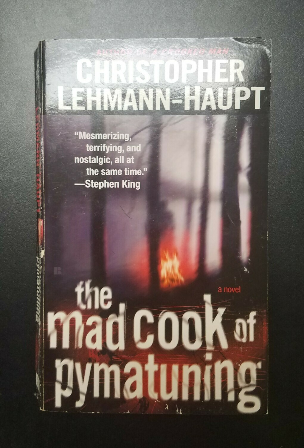 The Mad Cook of Pymatuning by Christopher Lehmann-Haupt
