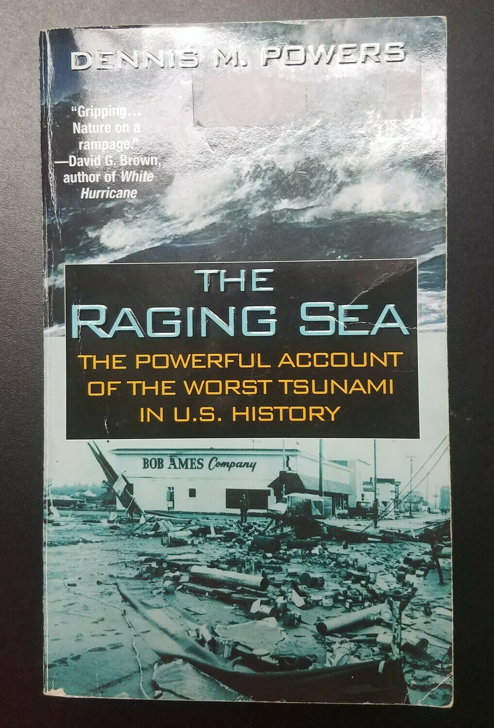 The Raging Sea by Dennis M. Powers