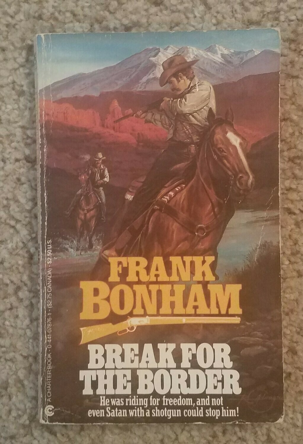 Break for the Border by Frank Bonham