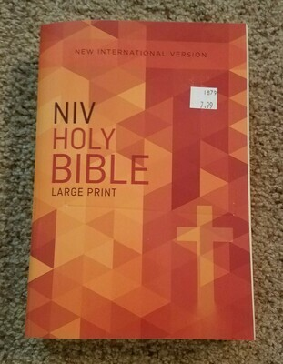 NIV Holy Bible - Large Print - Orange