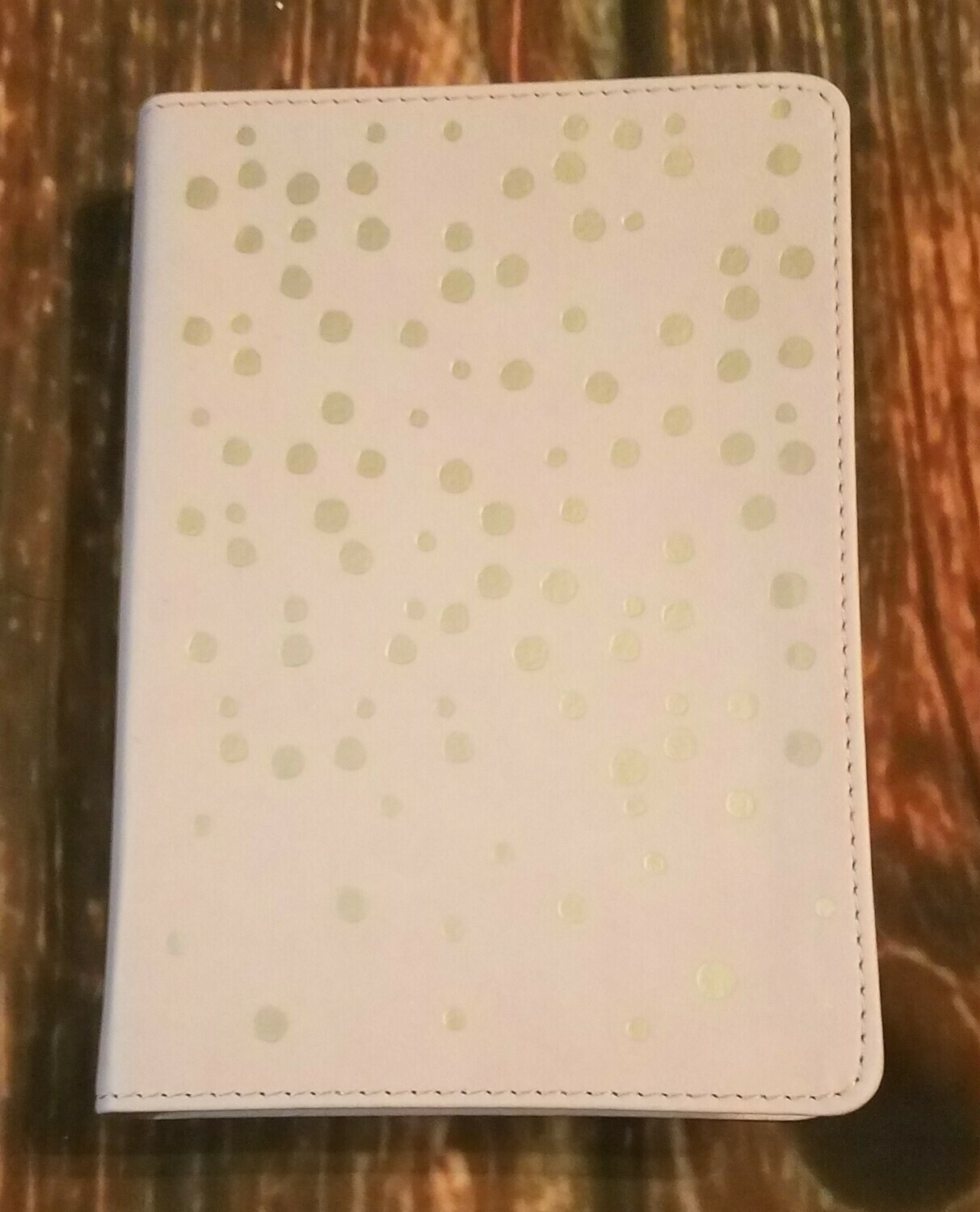 HCSB Compact Ultrathin Bible for Teens - Rose/Gold