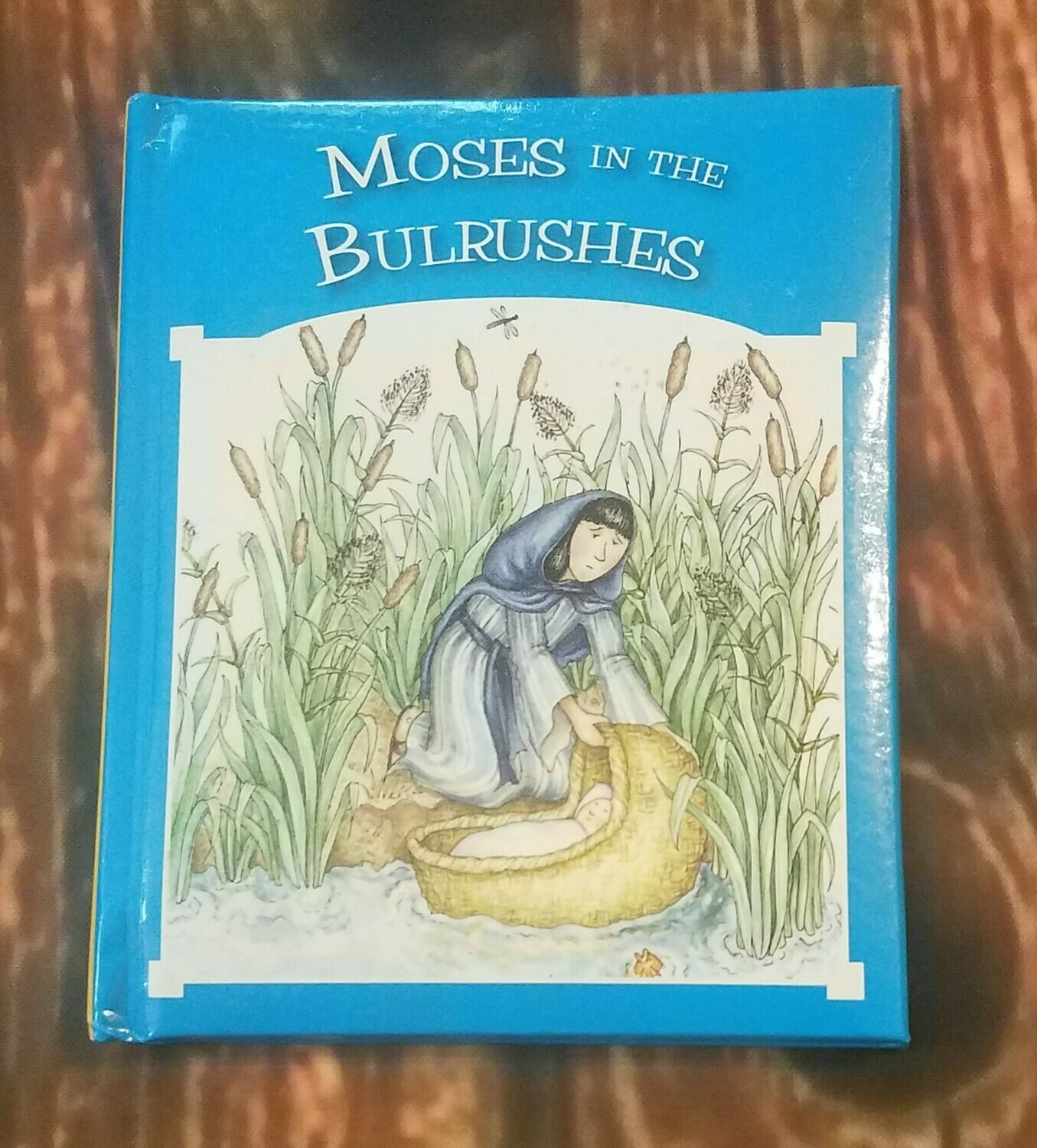 Moses in the Bulrushes by Tim and Jenny Wood