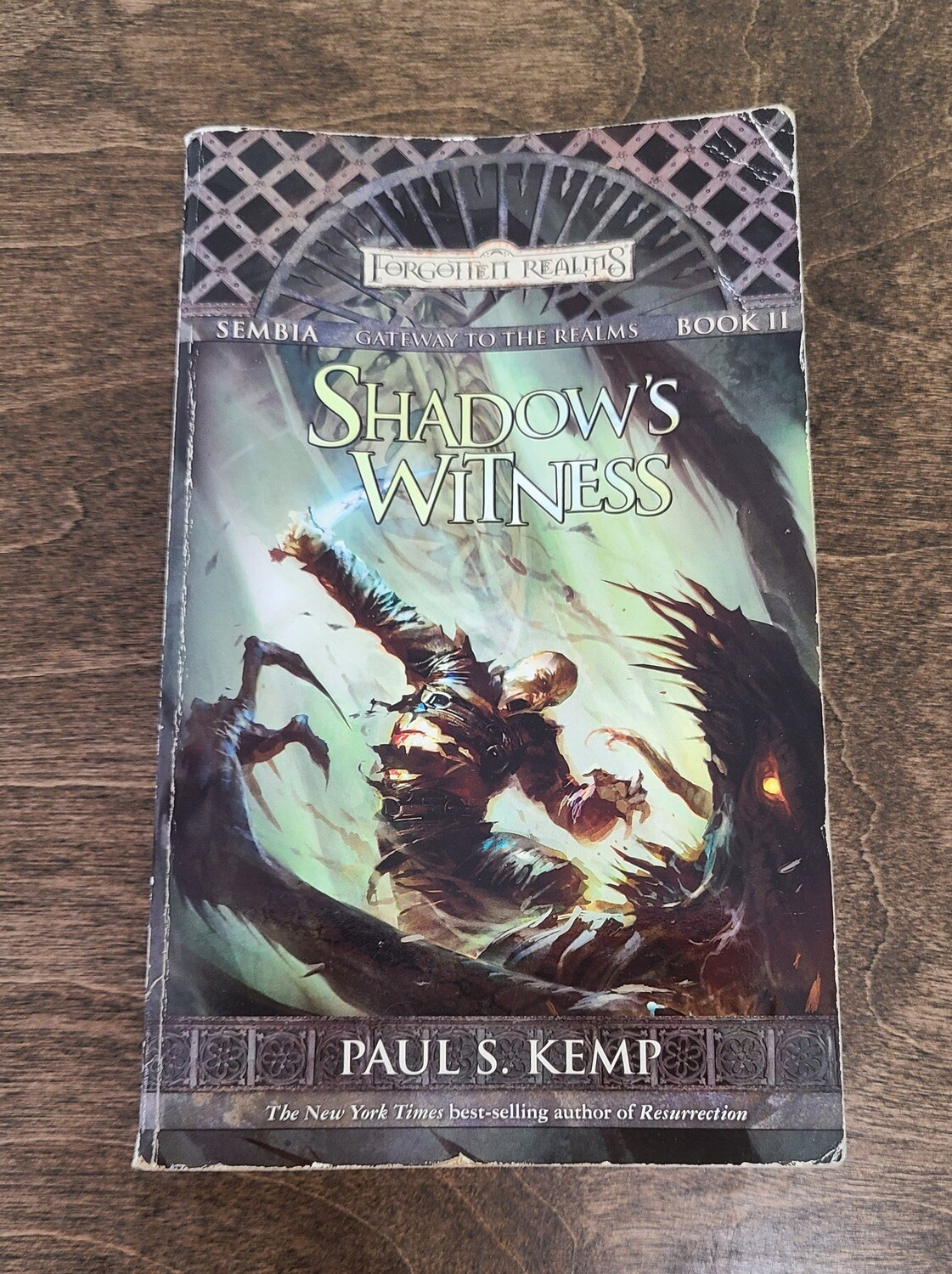 Gateway to the Realms: Shadow's Witness by Paul S. Kemp