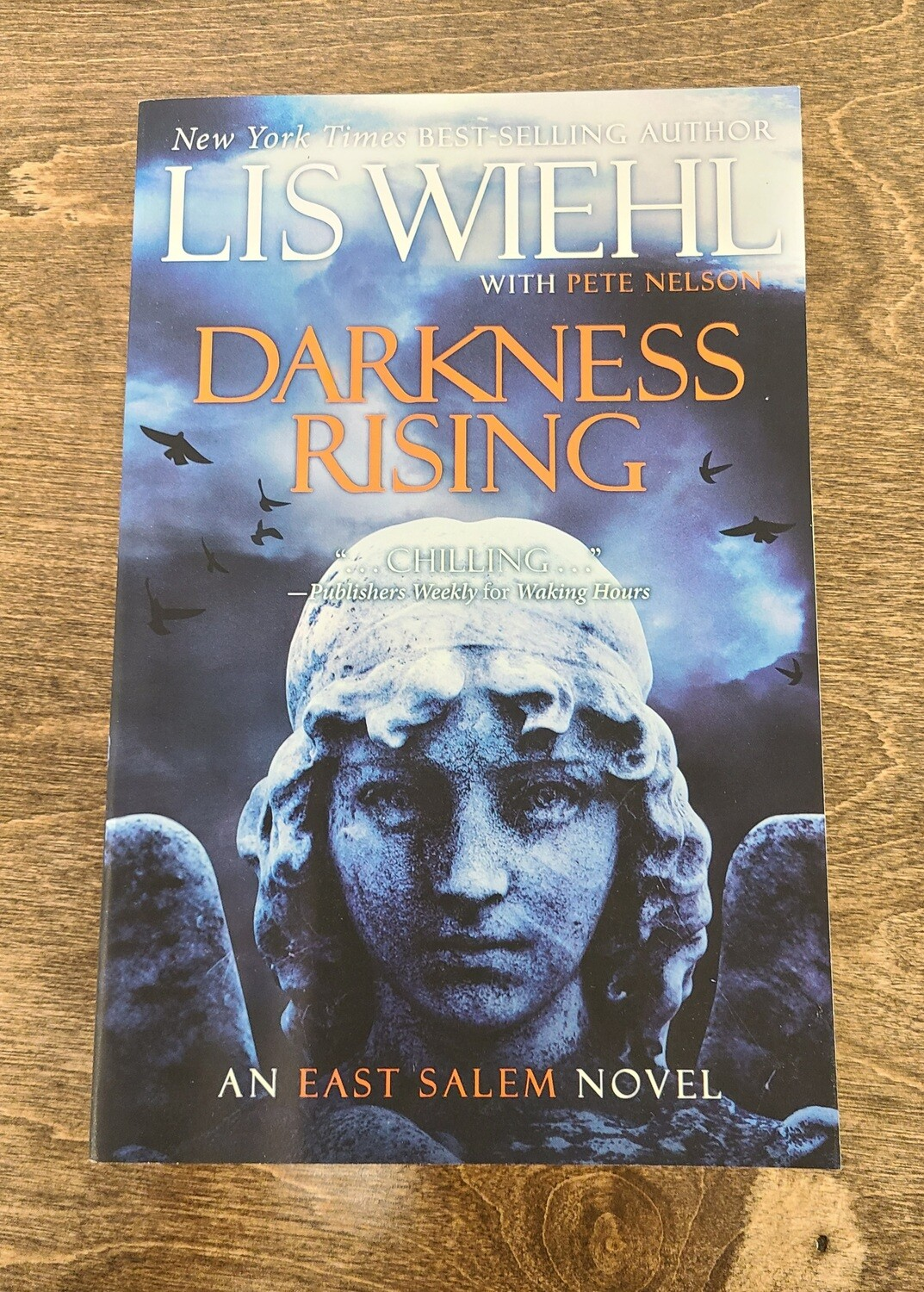 Darkness Rising by Lis Wiehl with Pete Nelson