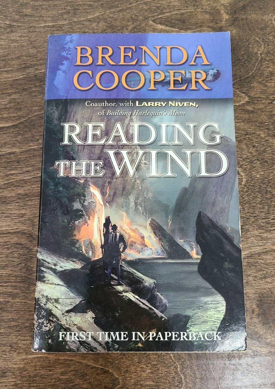 Reading the Wind by Brenda Cooper