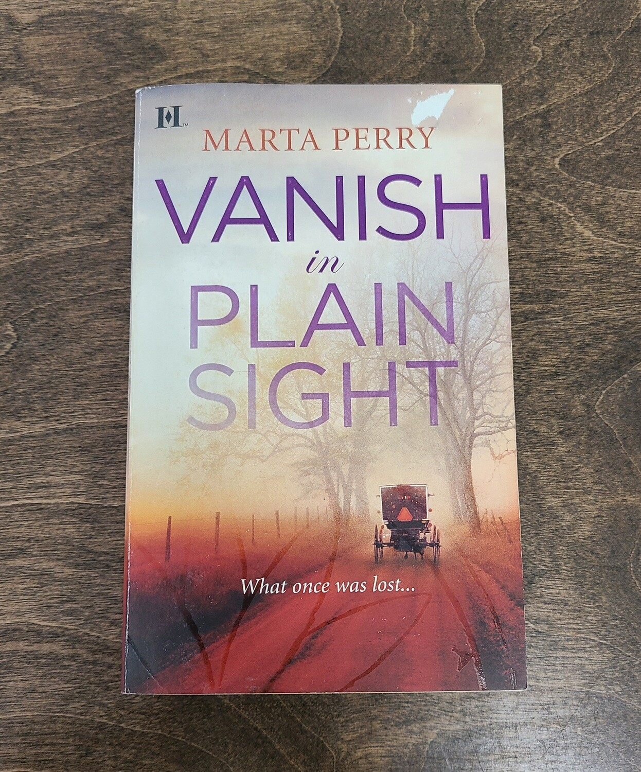 Vanish in Plain Sight by Marta Perry