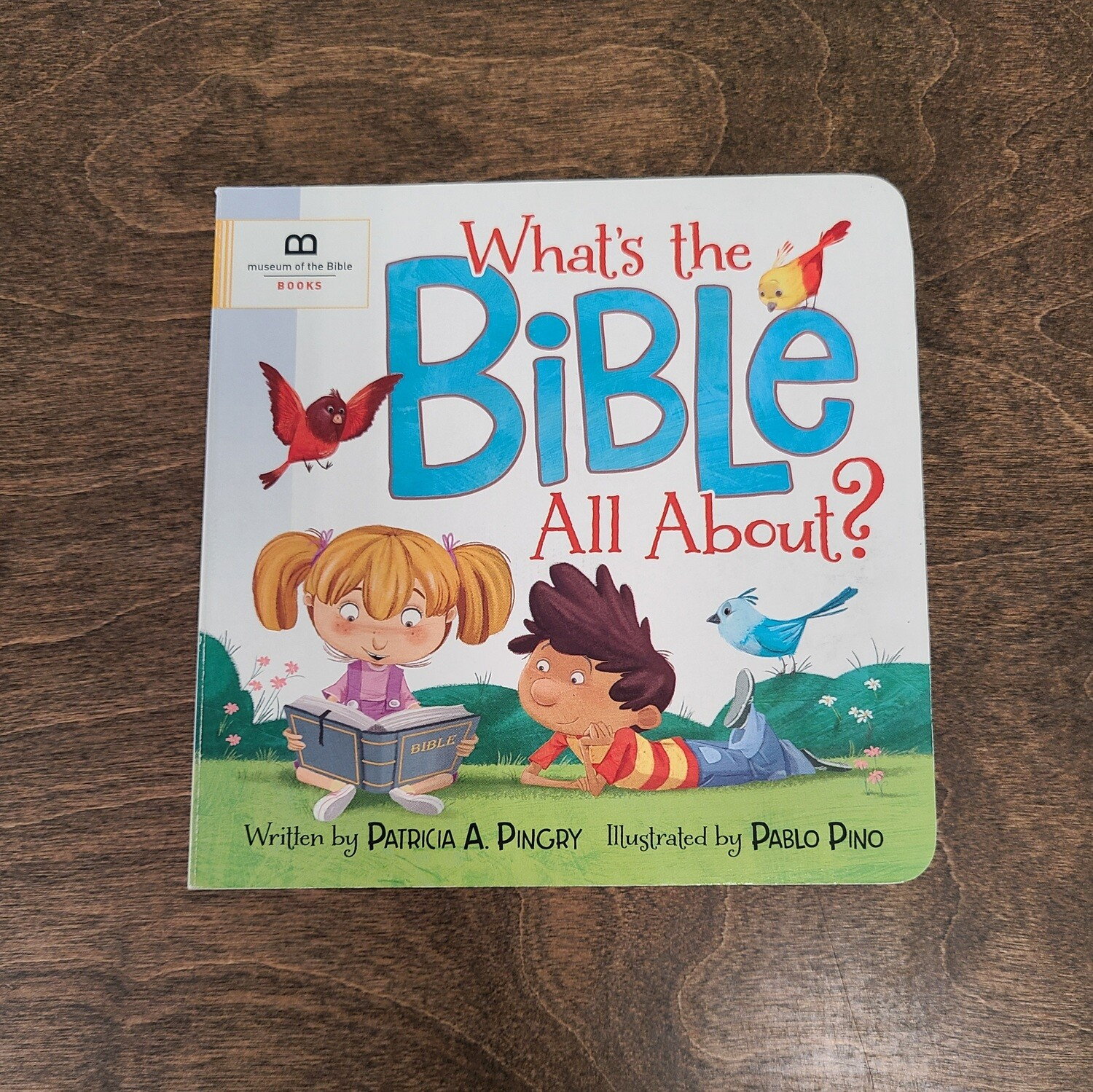 What's the Bible all About? by Patricia A. Pingry and Pablo Pino