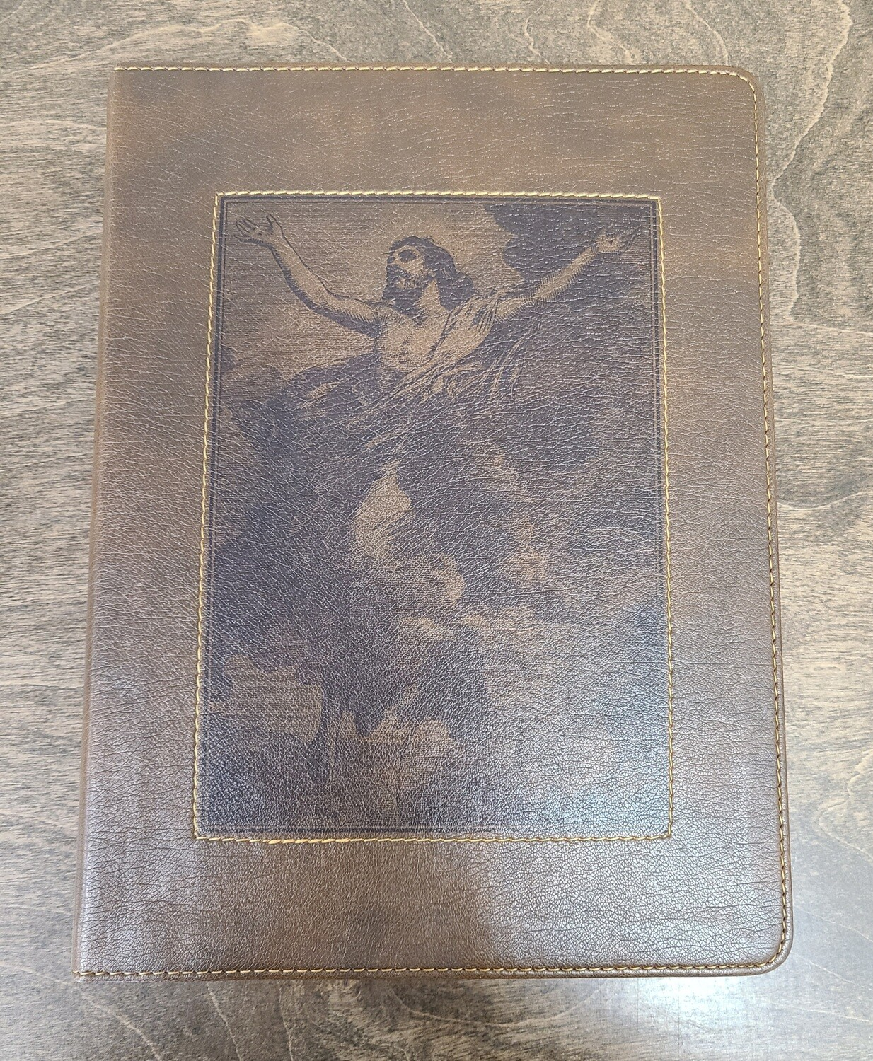 HCSB The Gospel Project Bible - Christ Ascending Design with Brown LeatherTouch