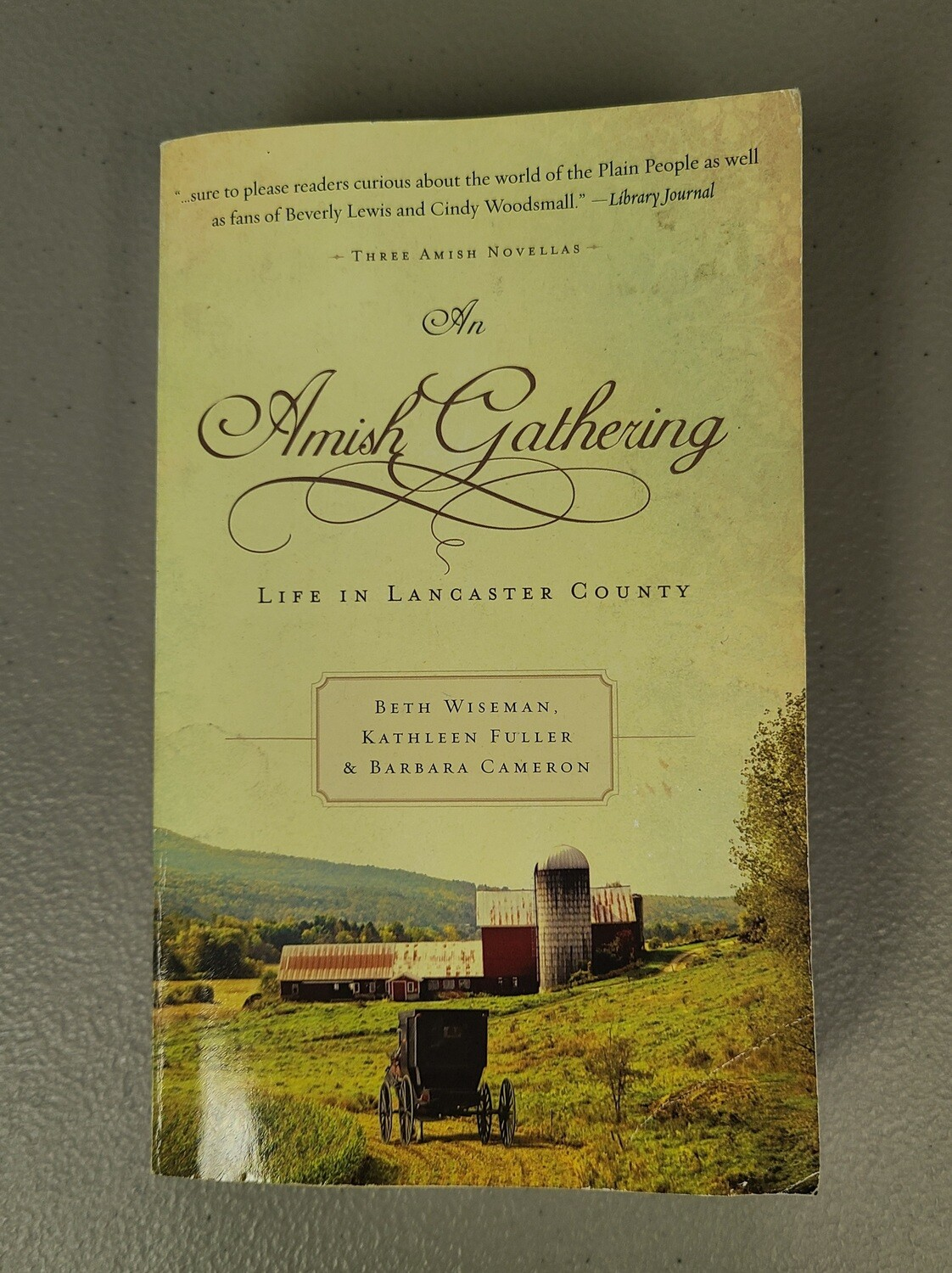An Amish Gathering by Beth Wiseman