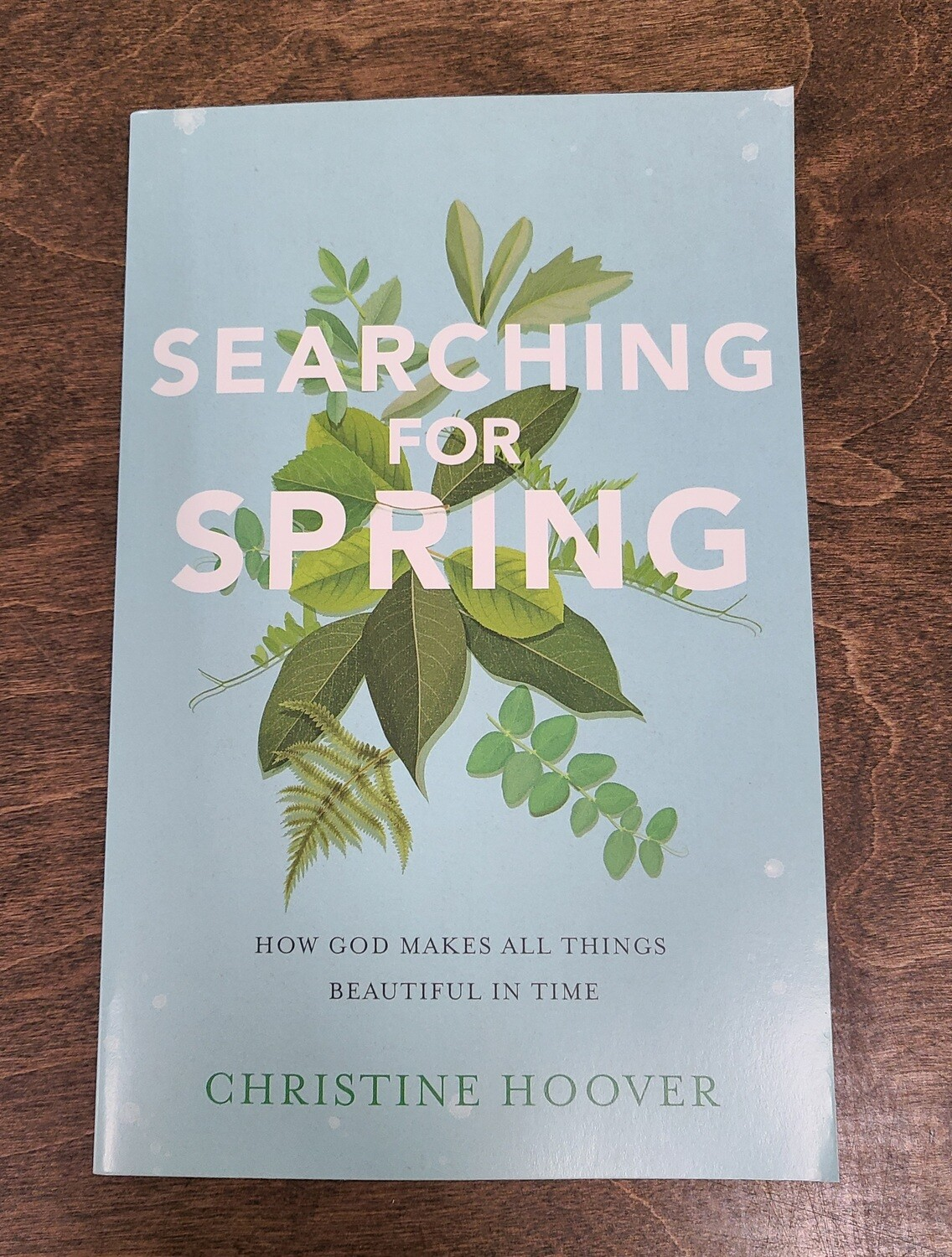 Searching for Spring: How God Makes All Things Beautiful In Time by Christine Hoover
