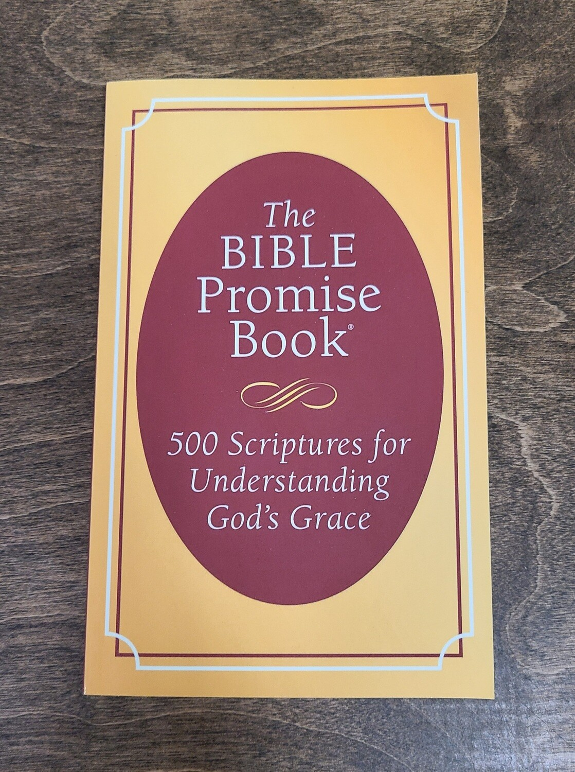 The Bible Promise Book: 500 Scriptures for Understanding God's Grace by Jessie Fioritto