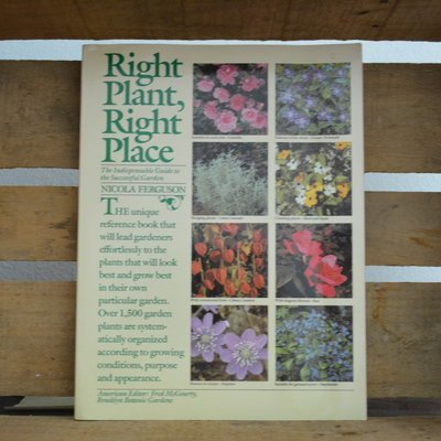 Right Plant Right Place by Nicola Ferguson
