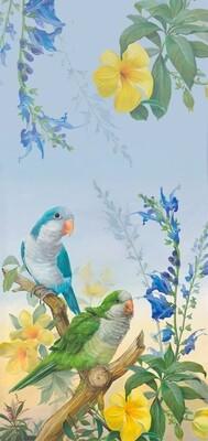 Quaker Parrot Scarf (Woman's)