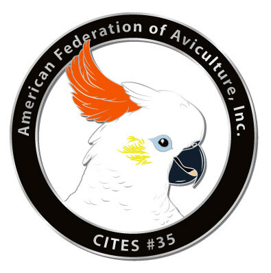CITES Pin #35- Citron-crested Cockatoo
