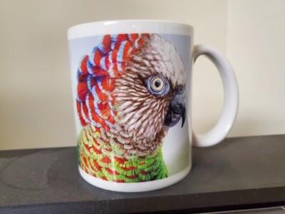 Hawk-headed Parrot  - Ceramic Mug