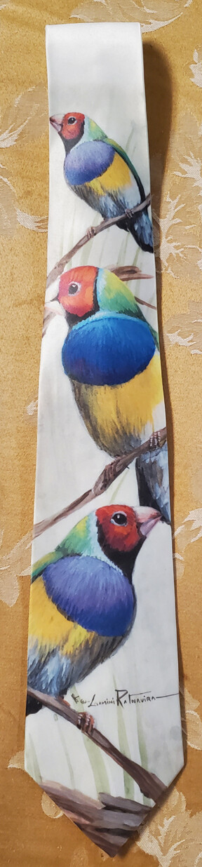 Lady Gouldian Finches - Neckties