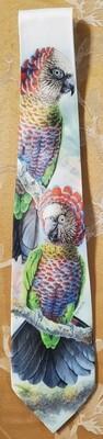 Hawk-headed parrot - Neckties