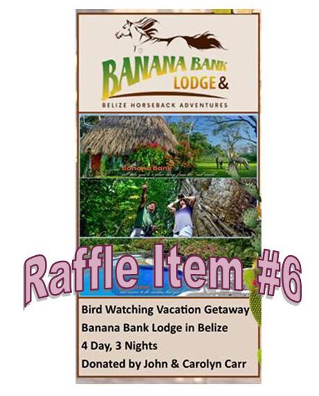 Super 8 Raffle Ticket Prize #6 Belize Vacation