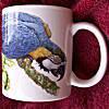 Blue and Gold Macaw  - Ceramic Mug