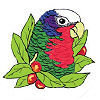 #24 Cuban Amazon - CITES Pins