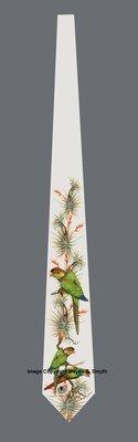 Blue Throated Conures - Neckties
