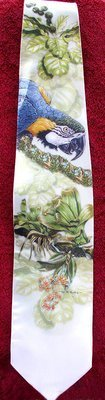 Blue & Gold Macaws - Neckties