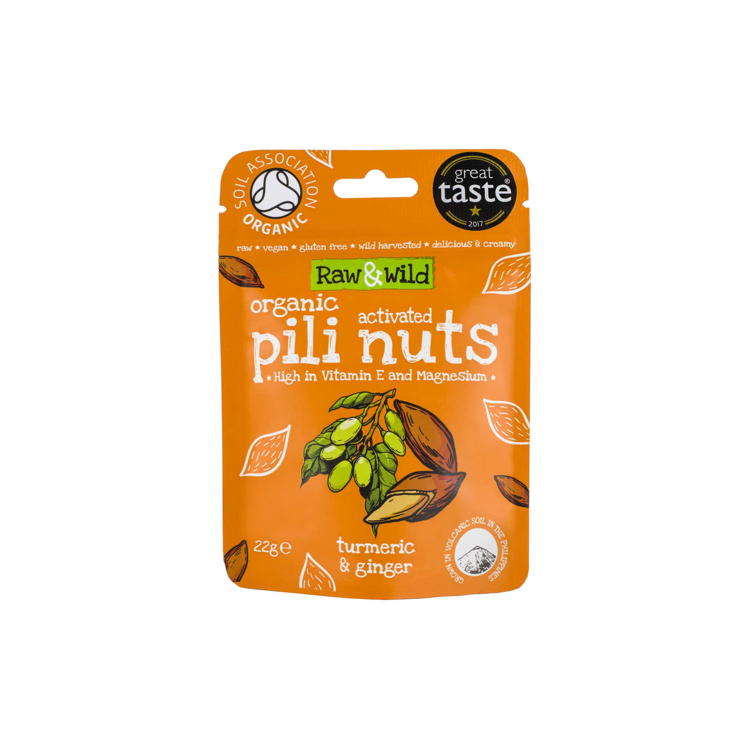 Organic Activated Turmeric & Ginger Pili Nuts - 22g Snack Pack