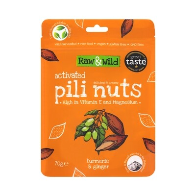 Activated Turmeric & Ginger Pili Nuts - 70g