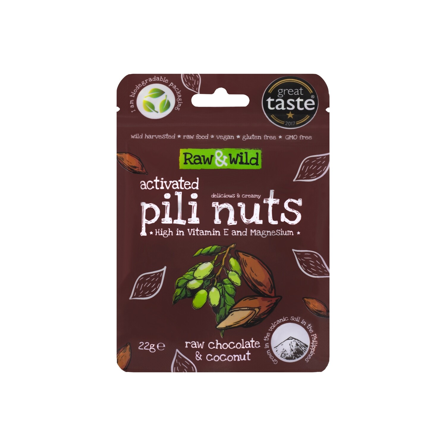 Activated Raw Chocolate & Coconut Pili Nuts - 22g Snack Pack
