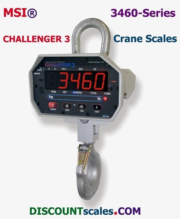 MSI-502887-0001 Crane Scale (250 lb. x 0.1 lb. + 500 lb. x 0.2 lb.)