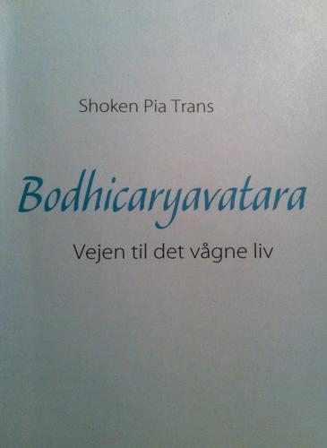 Bodhicaryavatara, E-bog