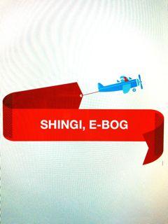 Shingi sommer 2011 - e-bog
