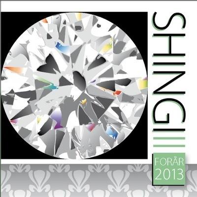 Shingi forår 2013 - e-bog