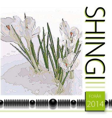 Shingi forår 2014 - e-bog