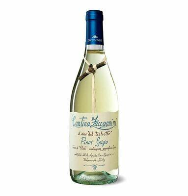 Zaccagnini, Pinot Grigio