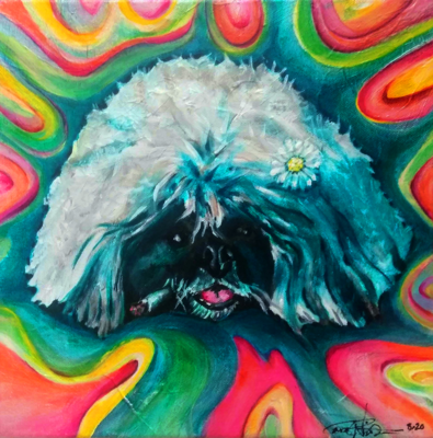 Pet Portraits (paintings on canvas)