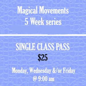 Single Day Class Pass - Monday, Wednesday and or Friday.