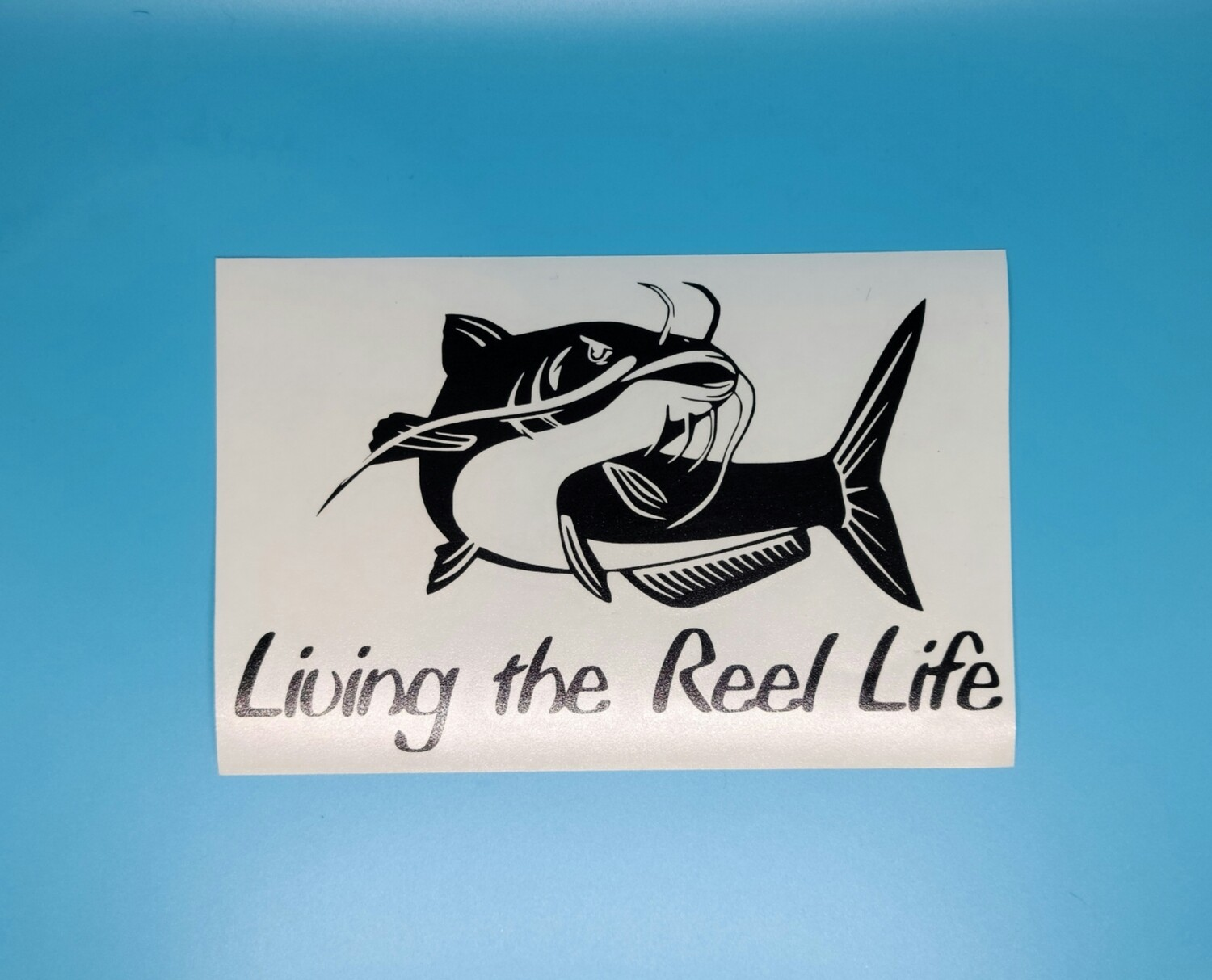 Living the Reel Life