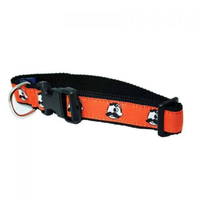 Natty Boh Dog Collar