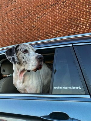 Spoiled Dog on Board Vinyl Car Decal/ Transfer Sticker