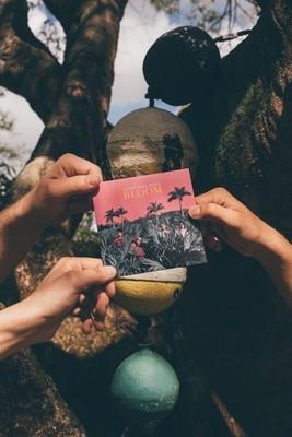 BLOOM CD