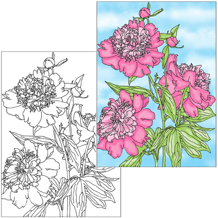 Peony Coloring Page