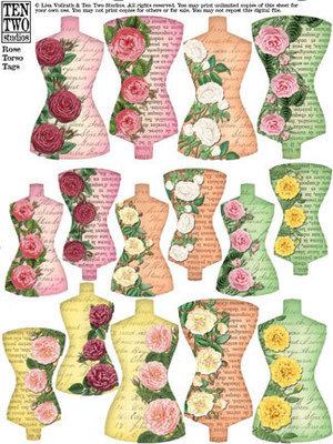 Rose Torso