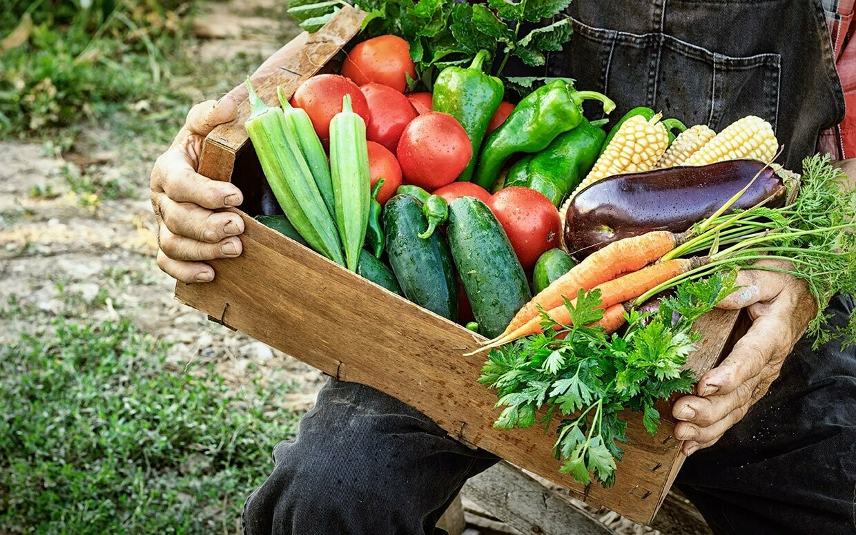 CSA Produce Box – Petite Weekly Subscription (Wednesday 4-6M Pickup)