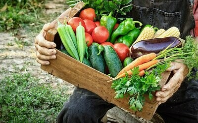 CSA Produce Box – Small Weekly Subscription (Saturday June 13, 9:00AM - Noon)